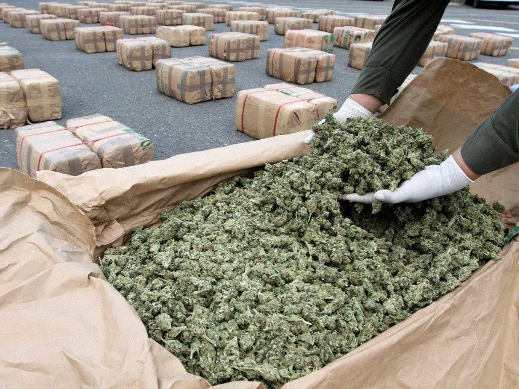 marijuana-21[1]