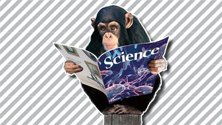 Science-Chimpanzee[1]