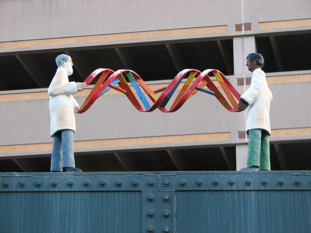 Статуя ДНК вНью-Брансуике, Канада