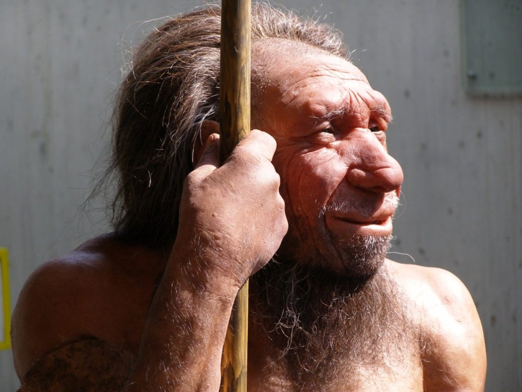 Blame-Your-Allergies-on-the-Neanderthal-Man1[1]